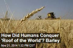 How Did Humans Conquer 'Roof of the World'? Barley