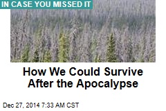 How We Could Survive After the Apocalypse