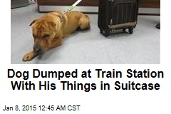 Dog Dumped at Train Station With His Things in Suitcase