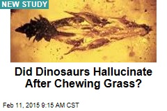 Did Dinosaurs Hallucinate After Chewing Grass?