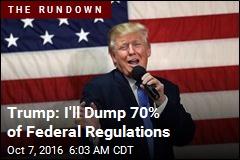 Trump: I'll Dump 70% of Federal Regulations