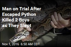 Man on Trial After Escaped Python Killed 2 Boys as They Slept