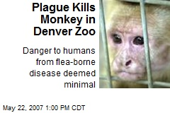 Plague Kills Monkey in Denver Zoo