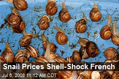 Snail Prices Shell-Shock French