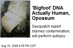 'Bigfoot' DNA Actually Human, Opossum