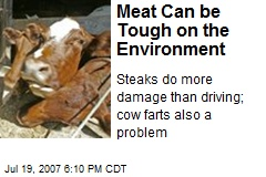 Meat Can be Tough on the Environment