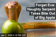 Forget Eve: Naughty Serpent Takes Bite Out of Big Apple