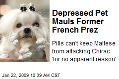 Depressed Pet Mauls Former French Prez
