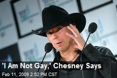 Kenny chesney blog gay
