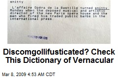 Discomgollifusticated? Check This Dictionary of Vernacular