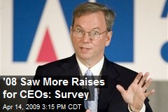 '08 Saw More Raises for CEOs: Survey