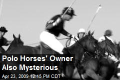 Polo Horses' Owner Also Mysterious