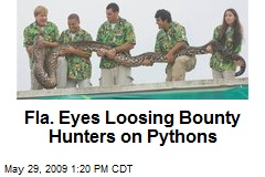 Fla. Eyes Loosing Bounty Hunters on Pythons