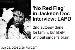 'No Red Flag' in Jackson Doc Interview: LAPD