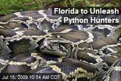 Florida to Unleash Python Hunters
