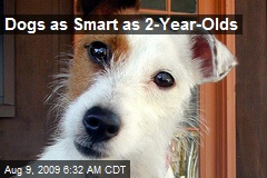 Dogs as Smart as 2-Year-Olds