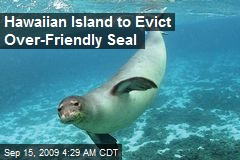 Hawaiian Island to Evict Over-Friendly Seal