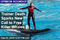 Trainer Death Sparks New Call to Free Killer Whales