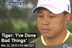 Tiger: 'I've Done Bad Things'