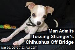 Man Admits Tossing Stranger's Chihuahua Off Bridge