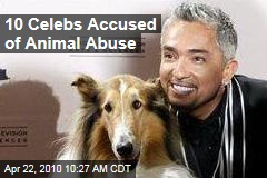 10 Celebs Accused of Animal Abuse