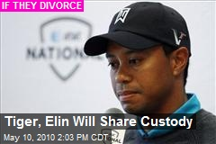 Tiger, Elin Will Share Custody