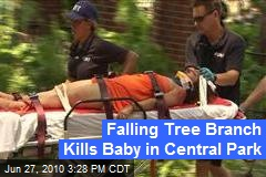 Falling Tree Branch Kills Baby in Central Park