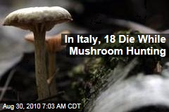 In Italy, 18 Die While Mushroom Hunting