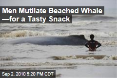 Men Mutilate Beached Whale &amp;mdash;for a Tasty Snack